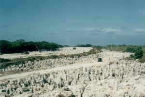 Fosfátové pole v blízkosti laguny Buada.